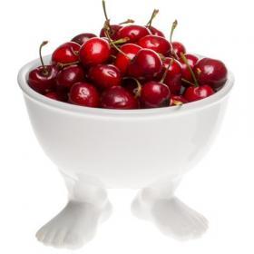 Пинкл (Pinkl) | Миска (тарелка) средняя белая | Dylan Kendall Efeet Collection Medium Bowl White | Подарки